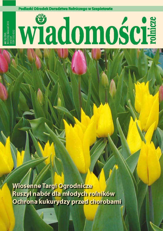 WR 4 okladka tulipan3