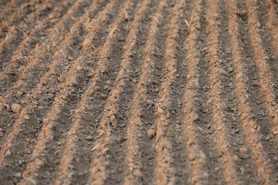 Zbliżają się terminy stosowania obornika i gnojowicy na gruntach rolnych